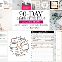 90-Day Marketing Plan + Extended Rights