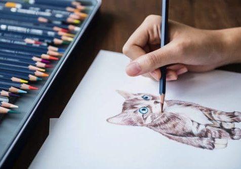 coloring-cat2